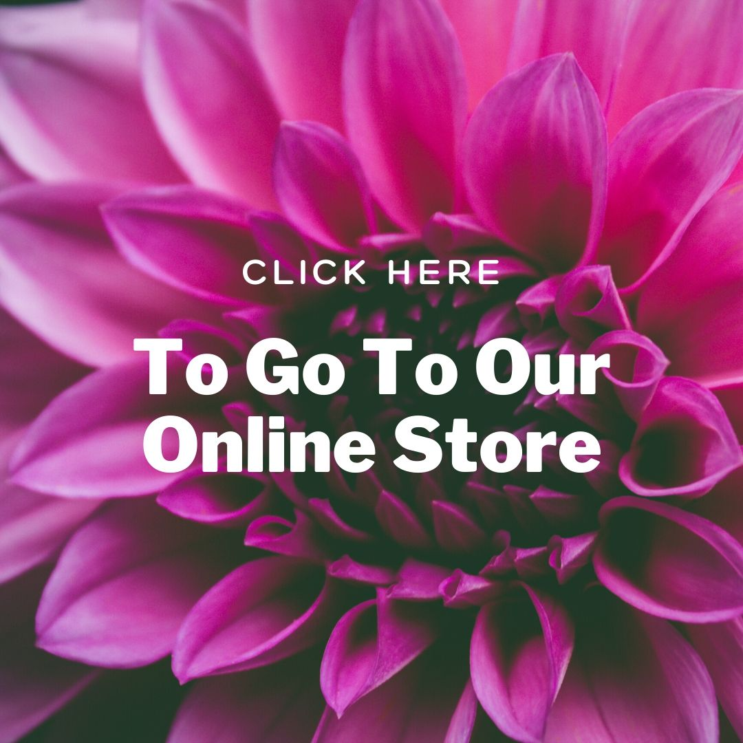 Click here for our online store